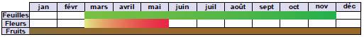 calendrier phénologique